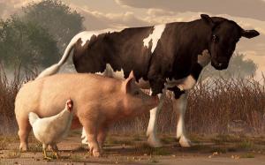 beef-pork-and-poultry-daniel-eskridge