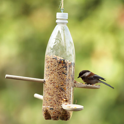 Simple Backyard Bird Feeder