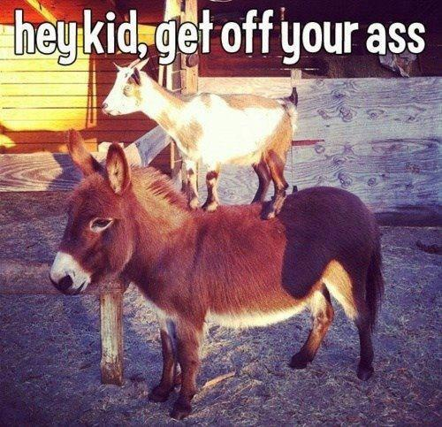 Hey-Kid-Get-Off-Your-Ass