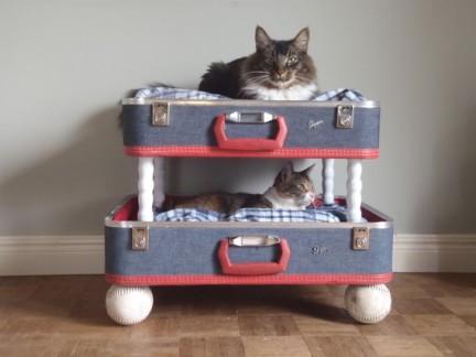 Feline Bunk Beds