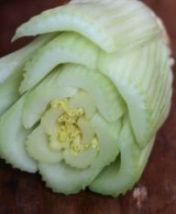 Celery off-cut
