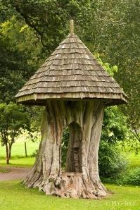 A tree pavillion