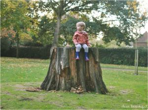 treestump&kid