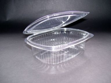 plastic-hinged-salad-food-containers