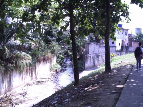 The creek empties into the Rio Cabuçu