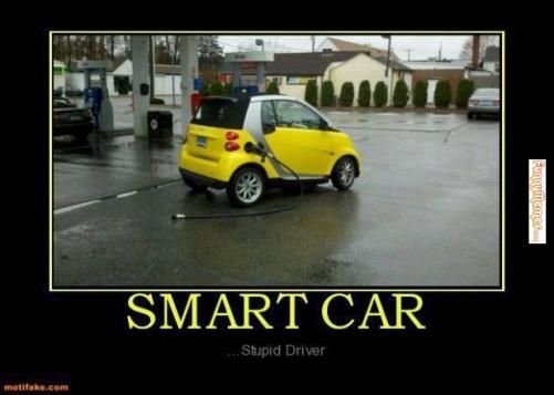 Stupid-driver